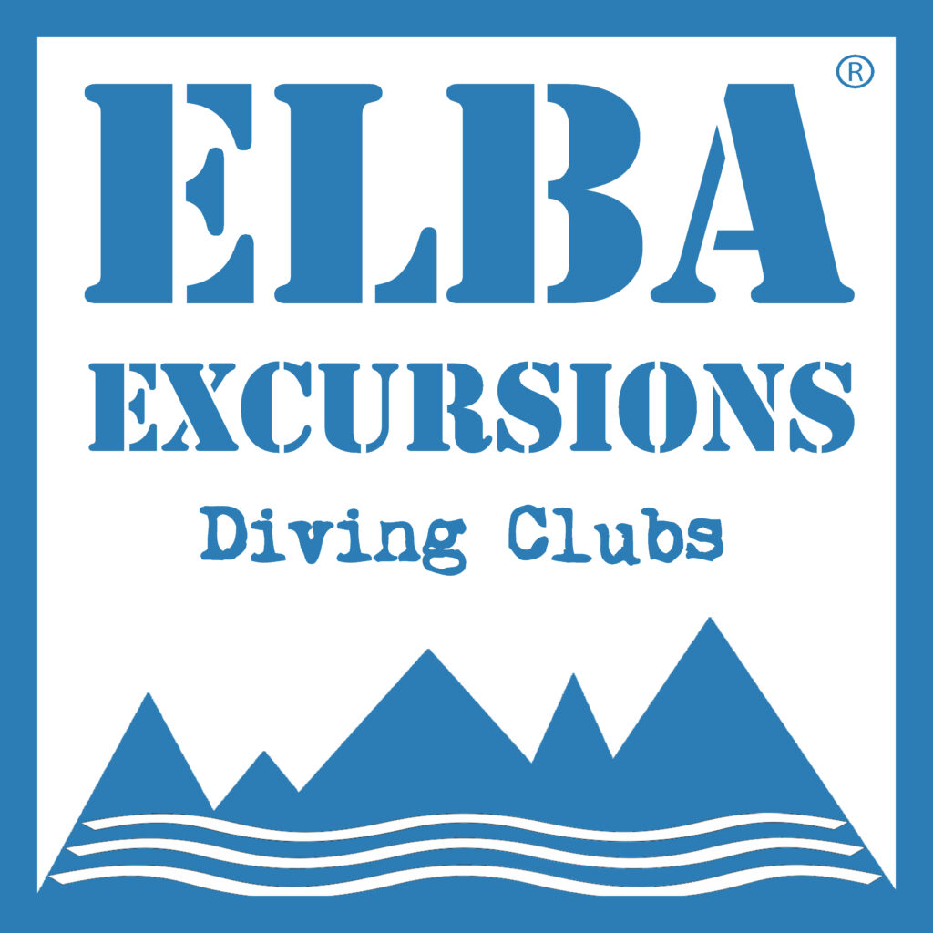 logo diving